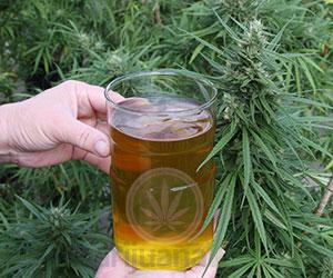 oilsolution-cannabis